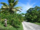 Recorrí a pie toda la isla de Niue